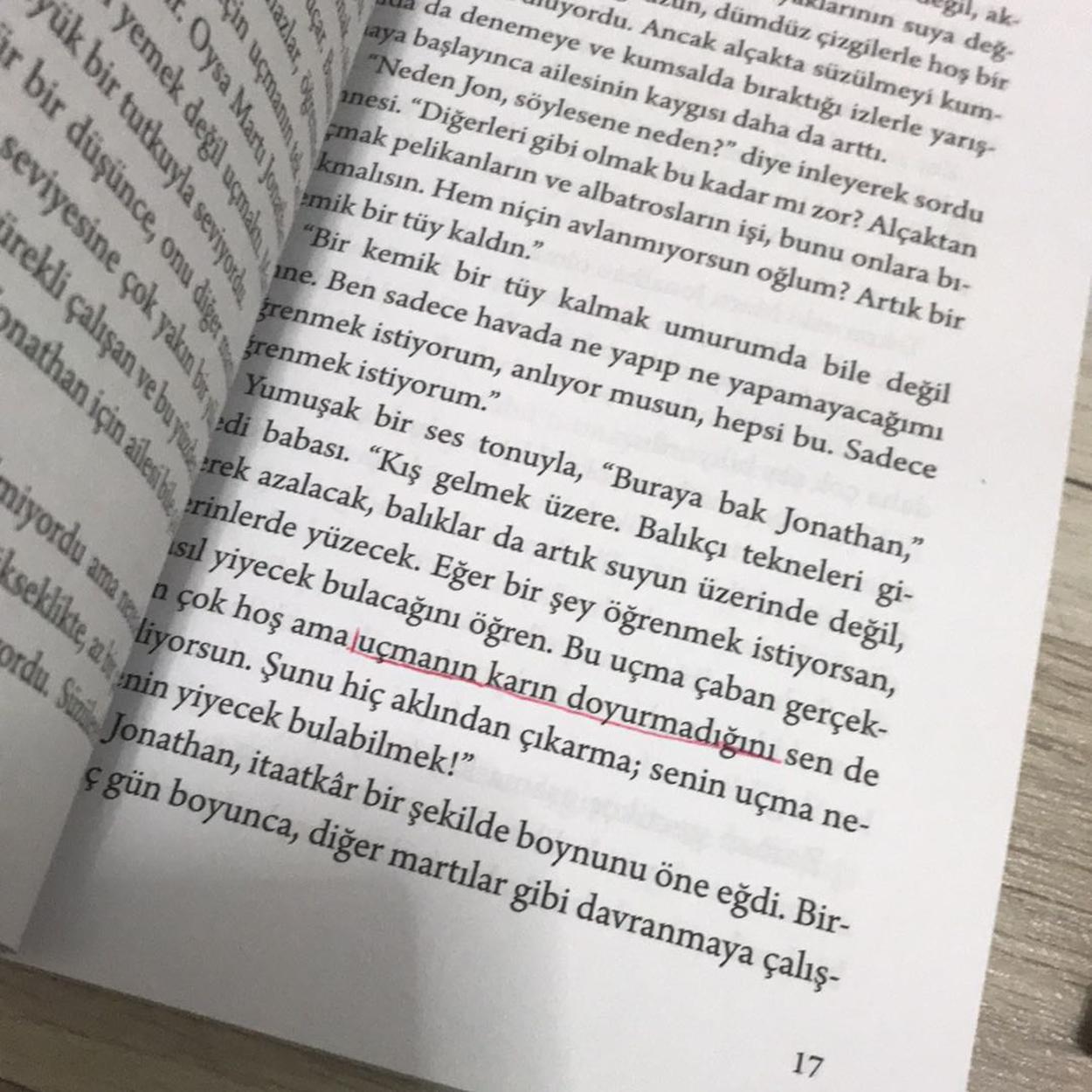 Addax Şal/Eşarp