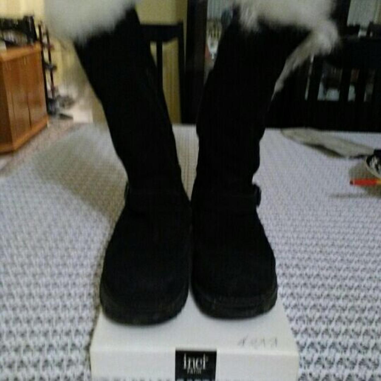 Cat Çizme