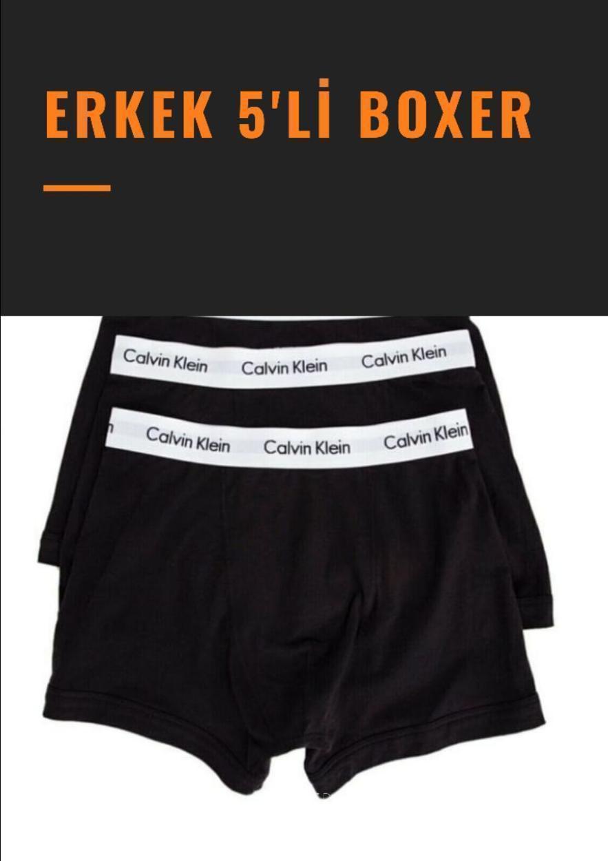 Diğer Boxer