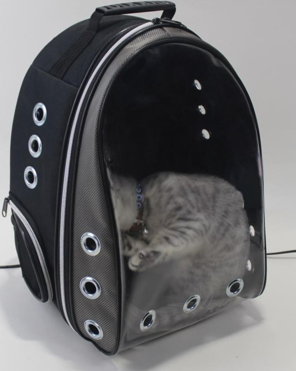 Diğer Kedi Taşıma Çantası
